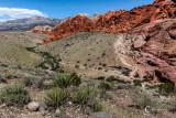 Red Rock Canyon-6578.jpg