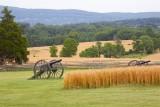 Cannons of Antietam
