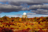 Fall at Rickett's Glen SP