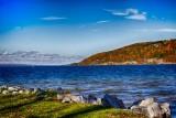 Finger Lakes Scene
