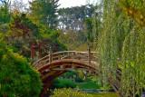 japapese garden 2jpg3.jpg