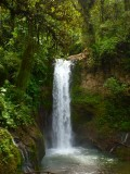 Costa Rica Waterfall.jpg