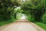 Affleck  Road