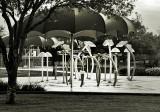 New Funbrellas