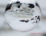 gooseberry crystal ball.jpg