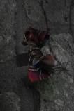 The last bow