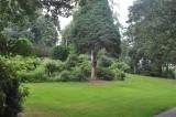 Cenral Park