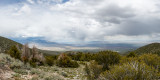Great Basin N.P., Nevada