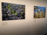 Frans Lanting @Fotomuseum
