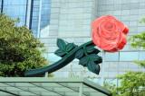 City of Roses, Portland, Oregon