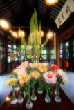 Peony, Lan Su Chinese Garden, Portland, Oregon