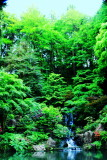 Heavenly Falls, Waterfalls, Strolling Pond Garden (chisen kaiyu shiki teien), Japanese Garden, Portland, Oregon
