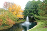 Palatine, IL, Fall Colors 2013