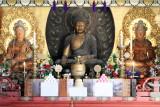 Buddha, Narita-san Shinshō-ji Temple, Narita, Japan