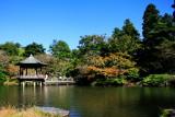 Pagoda, Naritasan park, Narita, Japan