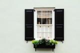 Window, Charleston Historic District