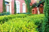 Residential garden, Charleston Historic District