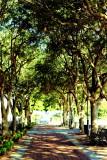 Waterfront Park, Charleston Historic District