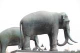 Elephants, Thailand's national animal