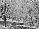 Winter, Chicago, Illinois