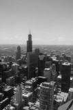 Sears Tower, Chicago view from the Aon Center, Black and White