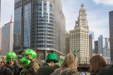 Green Hair, Chicago, St. Patrick's Day, 2015