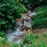 Creek, Alpenzoo, Innsbruck, Austria