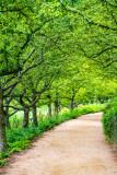 Path to English Walled Garden, Chicago Botanic Garden, Glencoe, IL