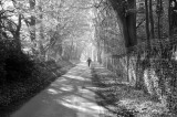 Early morning run black n white copy.jpg
