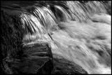 Water black and white jpg copy.jpg