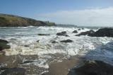 Cornwal coastal walk liz area.jpg