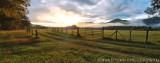 Country Cove Sunrise Panoramic