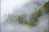 Evening fog in a Caucasus valley