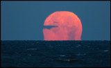 Pac-man like moon setting at Grönhögen (Hot-air=sharpness impossible)