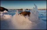 Ice formation in Torekov