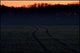 A field after sunset - Smedby