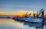 Fulton Harbor Boats.jpg
