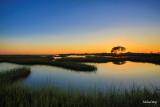 Bayou Vista Sunset