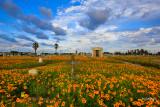 Old Galveston Cemetery