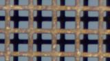 center-DSCF1887.jpg