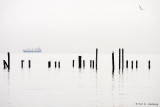 Pilings and horizon
