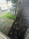 Tuscalossa rain 5515