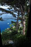 Portofino 7426