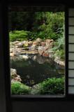 Japanese garden 5758