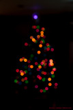 Christmas Tree (39993)