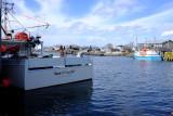 Knott-T-Boys 08 - Eastern Passage, Nova Scotia