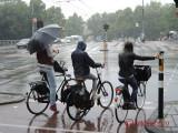 amsterdam-summer-vara-154.JPG