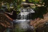 Norfolk botanical Gardens