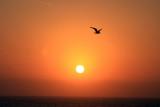 IMG_1576a Sunrise.jpg