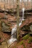 Yellow Birch Ravine Preserve 12-21-13